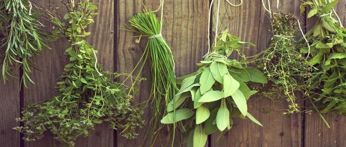 أعشاب تسبب ارتفاع ضغط الدم