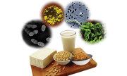 أهمية بكتيريا الأمعاء المفيدة (بروبيوتيك) في سلامة الجسم