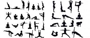 التمارين  الرياضية مفيدة لأعضاء الجسم