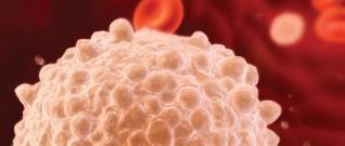 اضطرابات خلايا الدم البيضاء