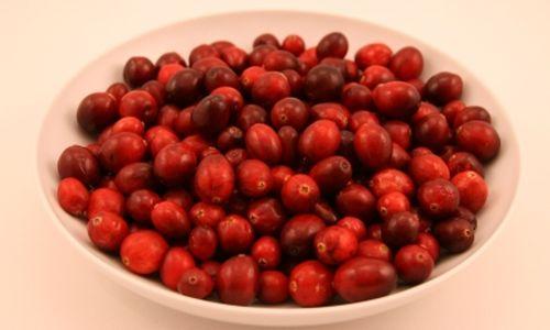 عصير التوت البري يحارب التهابات المسالك البولية بسرعة