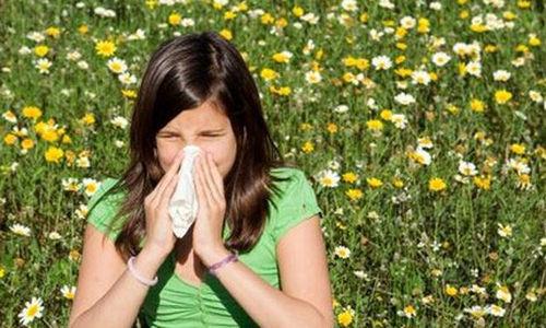 عندما تصل مستويات مسببات الحساسية الربيعية ذروتها ابق في المنزل
