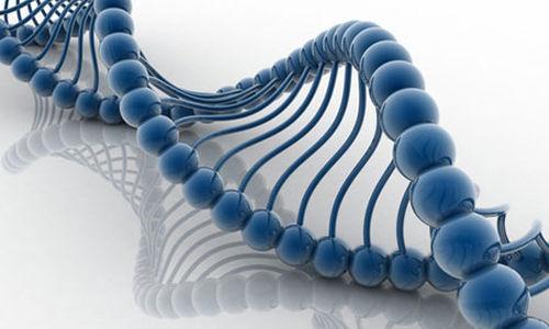 تحديد الطفرات الجينية التي تسبب انسداد الامعاء
