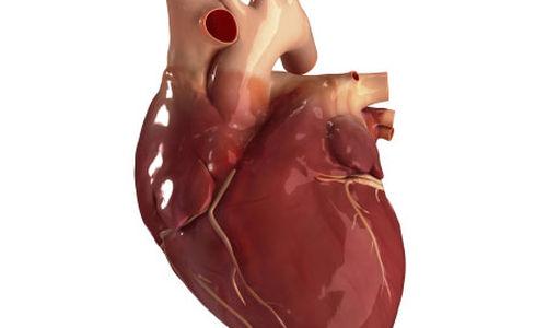 التعرض للأوزون يسبب تغيرات سلبية في القلب والاوعية الدموية