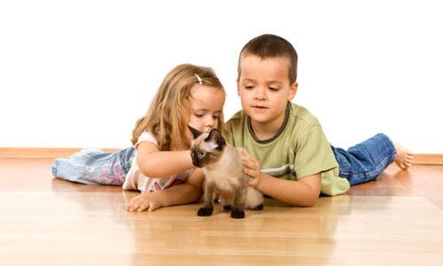 تمتع أطفال العائلات المُربية للحيوانات بصحة أكبر مقارنة بغيرهم