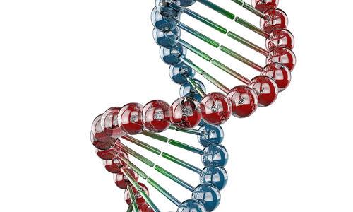 حماية جينية ضد الزرنيخ