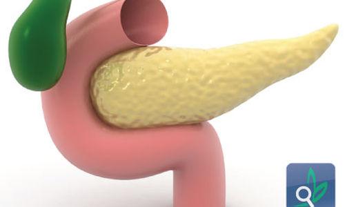 حجم البنكرياس علامة لمرض السكري