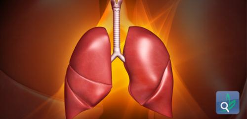 فحوصات الدم  تتوقع التصاعد المفاجئ لأمراض الرئة