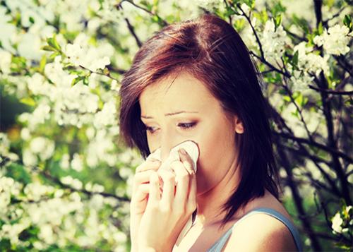 جُرعة من الكورتيزون للحساسية الموسمية