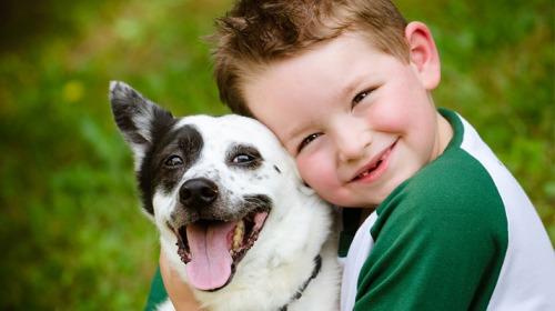 هل تساعد الحيوانات الأليفة أطفال التوحد؟