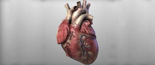 تضخم القلب مشكلة يجب الانتباه لها