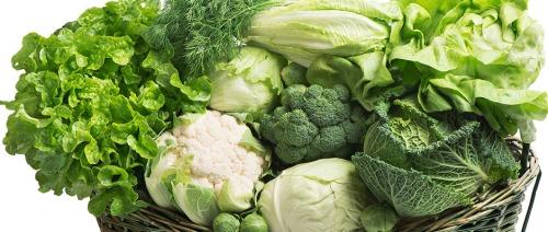 السكر في الأوراق الخضراء يساعد بكتيريا الأمعاء، كيف؟