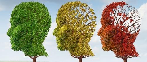 الشيخوخة المبكرة؛ أسبابها وطُرق الوقاية منها