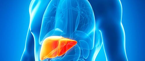 كيف يرتفع خطر الإصابة بسرطان الكبد لديك؟