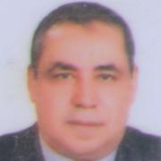 د.محمد حسام مغربى