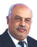 د. محمد محمد الحناوى