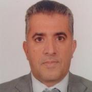 الدكتور محمد حمود السعيدي