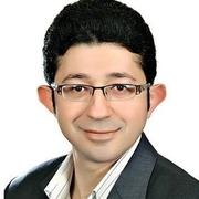 الدكتور محمود الوصيفي