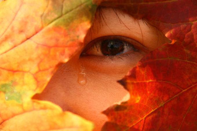 الدموع.. أنواعها وأهميتها