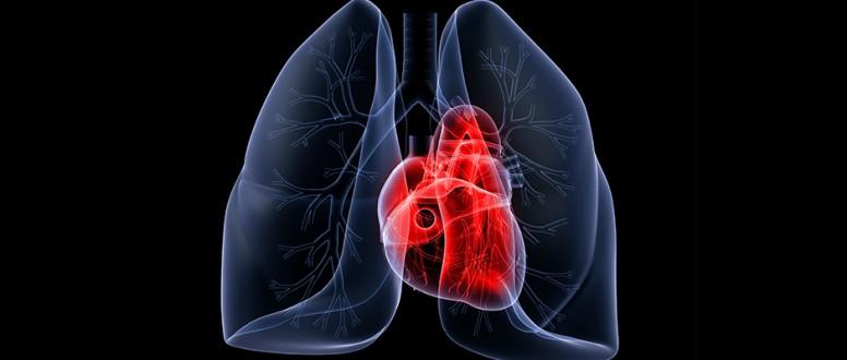 فرط ضغط الشريان الرئوي   Pulmonary artery hypertension  PAH