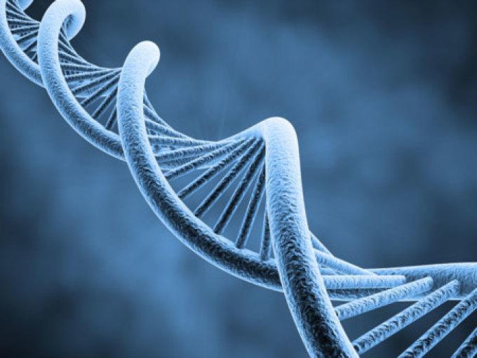 علم الوراثة