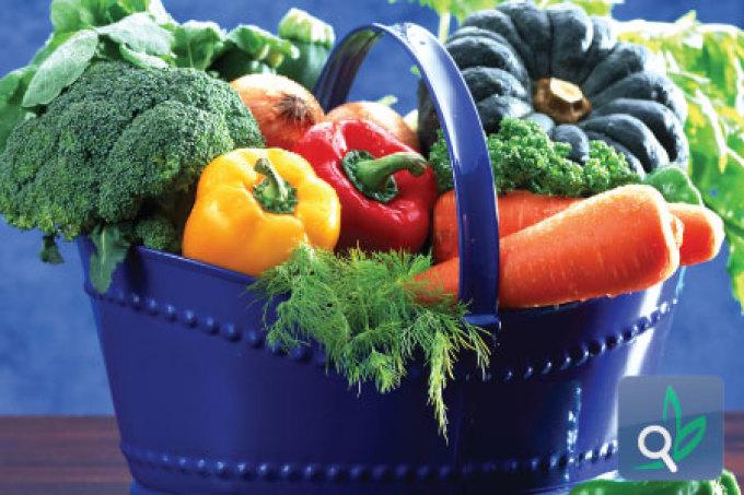 الأغذية وتأثيرها على الصحة