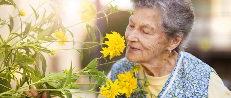 التداعيات المرضية لفقدان حاسة الشم عند المسنين