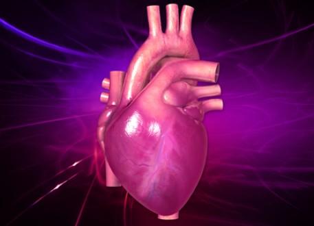 زراعة القلب ومتطلبات نجاحها