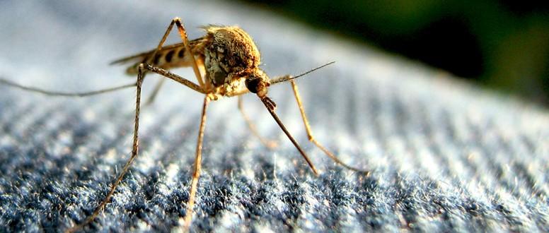 العدوى بفيروس النيل الغربي