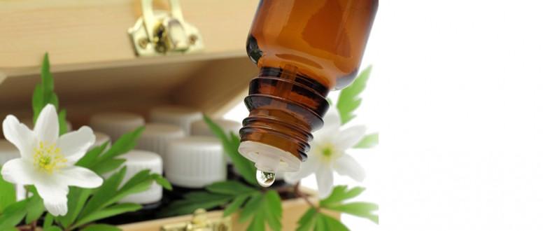 المنتجات النباتية الدوائية: بين الفائدة المرجوة و الضرر المحتمل