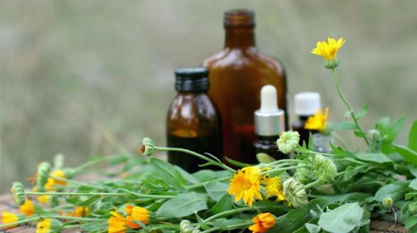 فعالية الأدوية العشبية في معالجة نوبات الربو و الوقاية منها