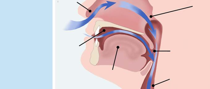 عدوى القناة التنفسية العلوية