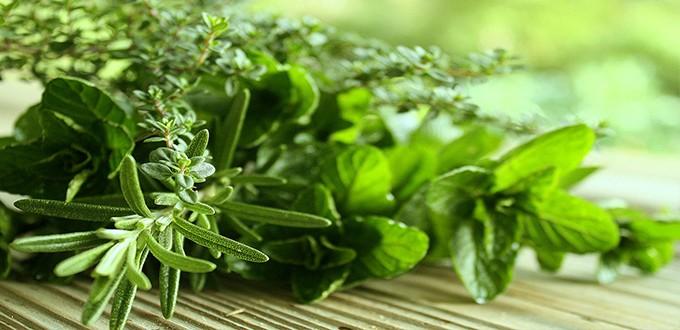 علاج قصر القامة بالأعشاب