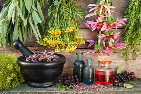 علاج القولون بالأعشاب